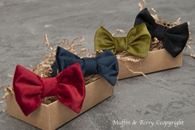 Bow tie FRANCESCO