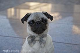 Bow tie ALVIN